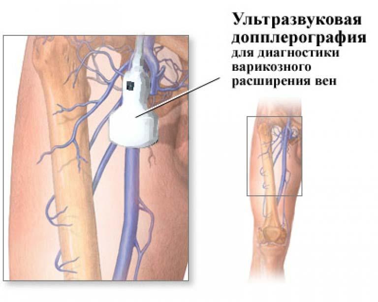какой врач занимается паразитами в организме человека